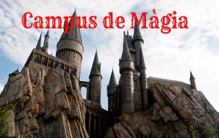 CAMPUS DE MAGIA AL ESTILO HOGWARTS